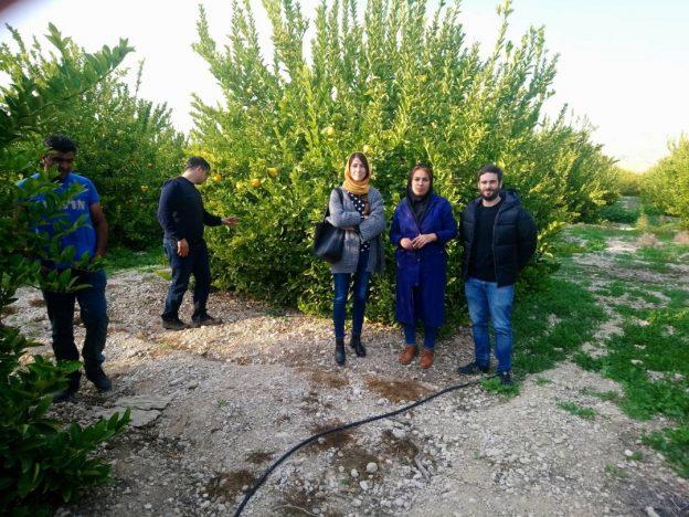 Visita Técnica Irán 2018