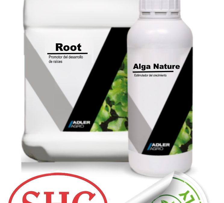 Organic certificate: Root and Alga Nature